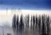 صبح مه آلود سیواس در ترکیه+عکس