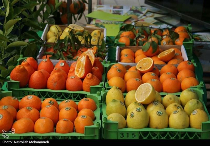سیب و پرتقال شب عید به مراکز استانها ارسال شد