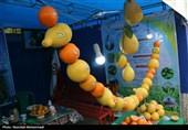 خوزستان| جشنوار برداشت مرکبات در دزفول به روایت تصویر