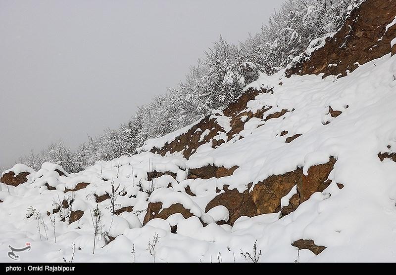 بارش بیسابقه برف در روستای کراب شهرستان سبزوار+عکس