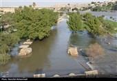 خوزستان| خسارتهای ناشی از افزایش دبی رودخانه دز به روایت تصاویر