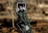 کنگره 6500 شهید استان کرمان  کاشت 6500 اصله درخت به یاد 6500 شهید استان کرمان