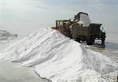 شهرستان گرمسار به عنوان قطب نمک درمانی در کشور معرفی شود