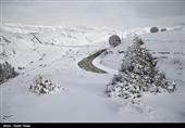 ارتفاع بارش برف در سرعین به 15 سانتیمتر رسید