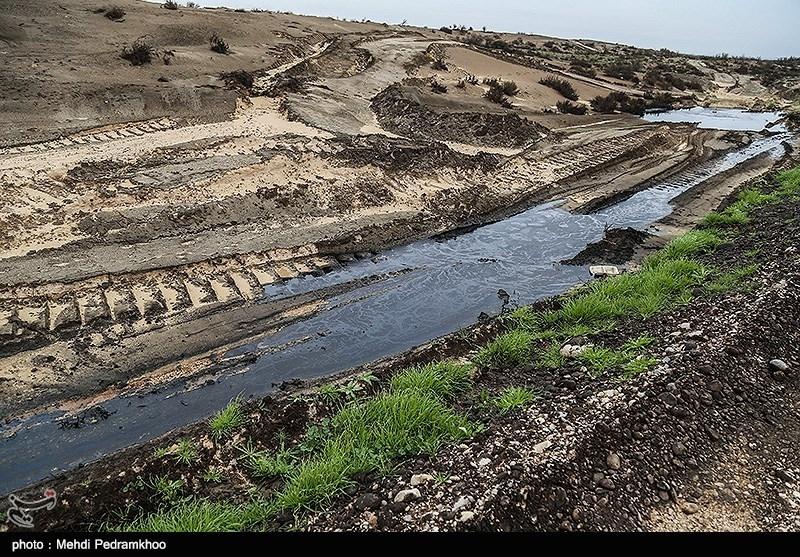 با خشک شدن این تالاب ها رطوبت خاک و هوا هم کاهش یافت و زمینه را برای فرسایش خاک در زمینهای اطراف یعنی جلگه خوزستان و عراق فراهم کرد و بدینترتیب پدیده شوم ریزگردها و خاکهای معلق آشکار شد .