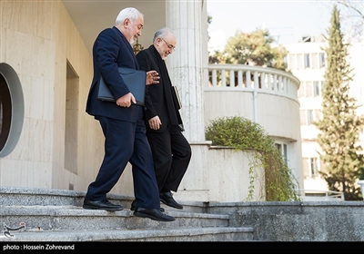 محمد جواد ظريف وزیر امور خارجه و علیاکبر صالحی معاون رییسجمهور و رییس سازمان انرژی اتمی
