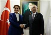 تصمیم مخالفین اردوغان برای فتح ۴ استان مهم