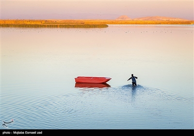 در استان آذربایجان غربی تعداد 30 تالاب دایمی و فصلی وجود دارد که برخی از آنها از اهمیت ملی و جهانی برخوردار هستند