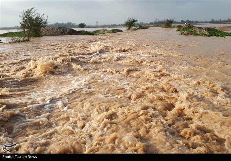 خوزستان| باران 120 میلیارد ریال به اراضی کشاورزی اندیمشک خسارت وارد کرد