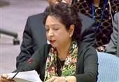 فلسطینی مسئلے کے حل کے بغیر پاکستان اسرائیل کو تسلیم نہیں کرے گا، ملیحہ لودھی