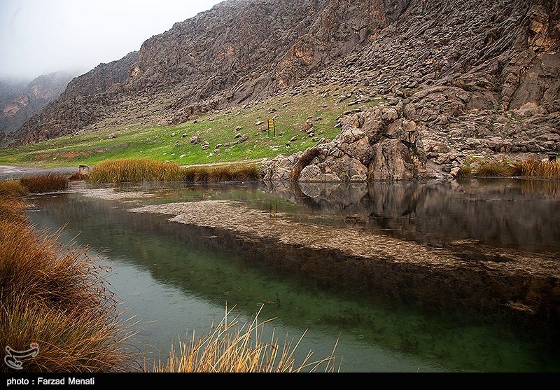 Hashilan Wetland in Kermanshah: A Tourist Attraction of Iran - Tourism news