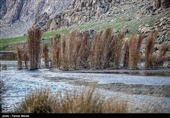 Hashilan Wetland in Kermanshah: A Tourist Attraction of Iran