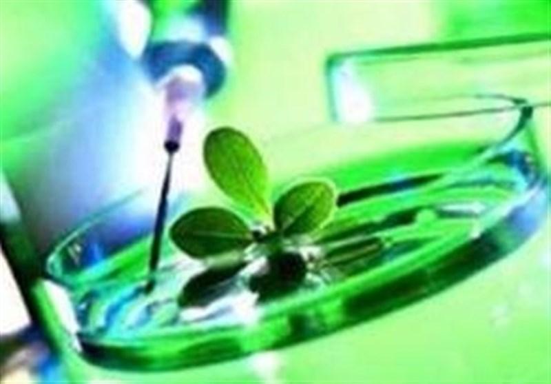 جایگاه ایران بین 5 تولیدکننده نخست آسیا در زیست فناوری