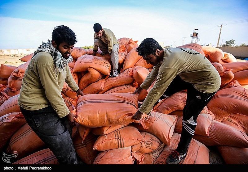 معاون هماهنگی امور اقتصادی استانداری تهران: مشکلی در موجودی ذخایر نهادههای دامی وجود ندارد