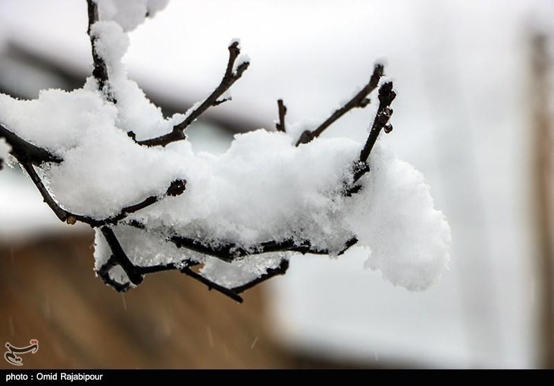 مدارس کدام شهرهای آذربایجان شرقی به دلیل برف و سرما تعطیلی یا تاخیری دارند؟