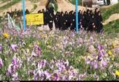 اعزام دانشآموزان مهرانی به اردوی راهیان نور+ تصاویر