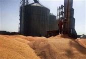بهرهبرداری از سیلوهای 45 هزار تنی غلات در بندر انزلی