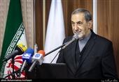 ولایتی: تهران و رم مخالف دخالت بیگانگان در امور داخلی کشورهای منطقه هستند