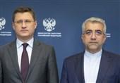 مذاکرات وزرای انرژی روسیه و ایران درباره توسعه همکاریهای دوجانبه