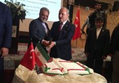 Iran, Turkey Complementary in Many Areas: Minister