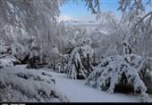 بارش برف برخی مدارس ارومیه و شاهین دژ را به تعطیلی کشاند