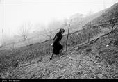 مازندران| 30 هزار متر مربع از اراضی زراعی بابلسر آزاد شد