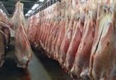رئیسشورای تامیندام: از دپوی 17 هزار تن گوشت در گمرک شوکه شدیم/واردکنندگان پاسخگو باشند