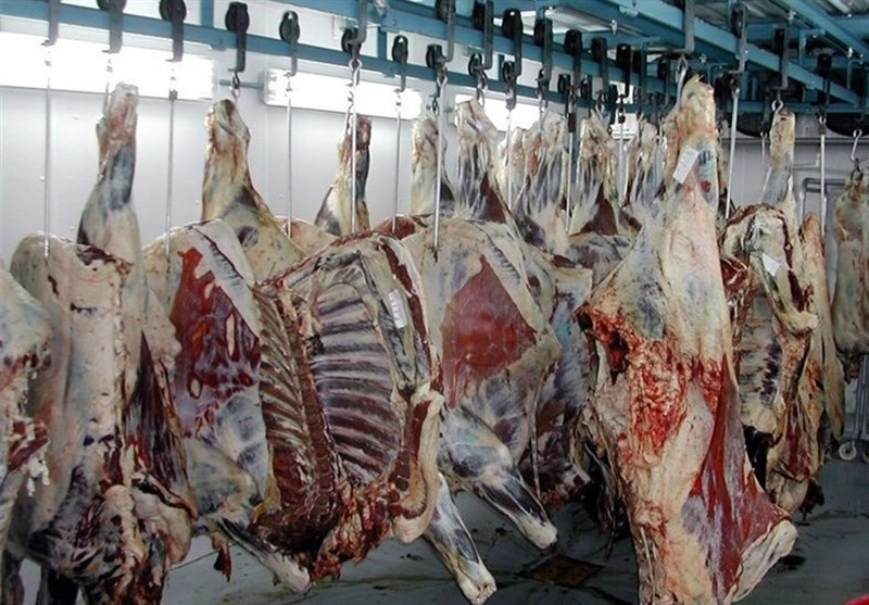 گوشت و مرغ تنظیم بازاری همچنان عرضه میشود