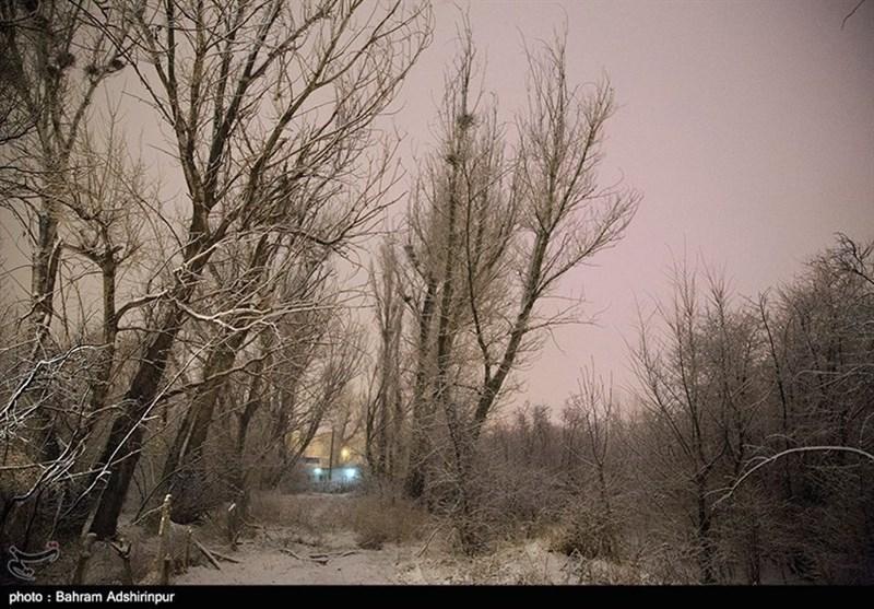 ارتفاع برف در جادههای خلخال به 60 سانتیمتر رسید؛ مسدود شدن راه ارتباطی دهها روستا