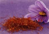 ظرفیت انبارهای زعفران در بورس به 17.7 تن رسید