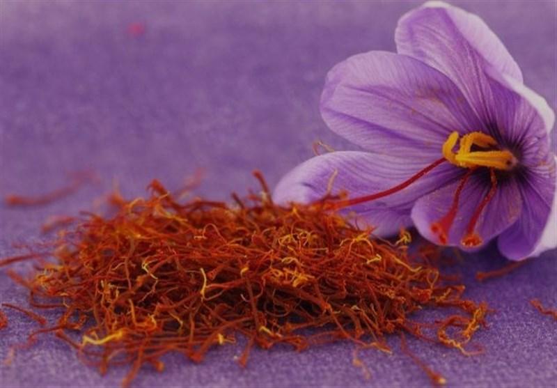 افزایش وجه تضمین اولیه آپشن زعفران پوشال معمولی در بورس کالا، از فردا