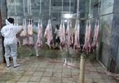 رفع مشکل متروکه شدن 70 کانتینر گوشت وارداتی در گمرک