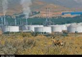 """سایت پالایشگاه """"تولید گازوئیل زیستی از روغن پسماند خوراکی"""" راهاندازی شد"""