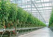 مشکلات توسعه شهرکهای کشاورزی اردبیل برطرف میشود