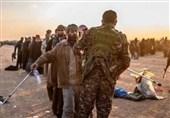آزاد شدن 300 عضو داعش در شمال سوریه