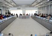 تمایل شدید مجلس پاکستان برای توسعه روابط با ایران