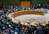 UN Security Council Condemns Terrorist Attacks in New Zealand