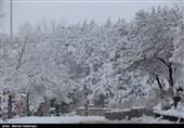 بهار 98| ورود سامانه بارشی جدید؛ برف و باران لرستان را فرا میگیرد