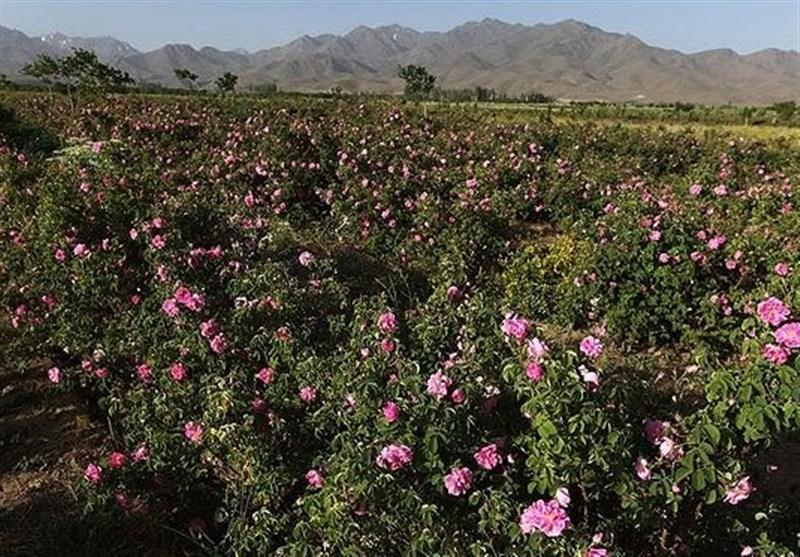 Lay-Zangan Village: Attractive Villages of Darab in Fars Province, Iran - Tourism news