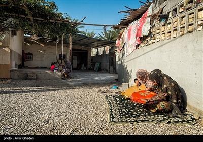 روستای تل سیاه - هرمزگان- اخبار مستند - اخبار تسنیم - Tasnim