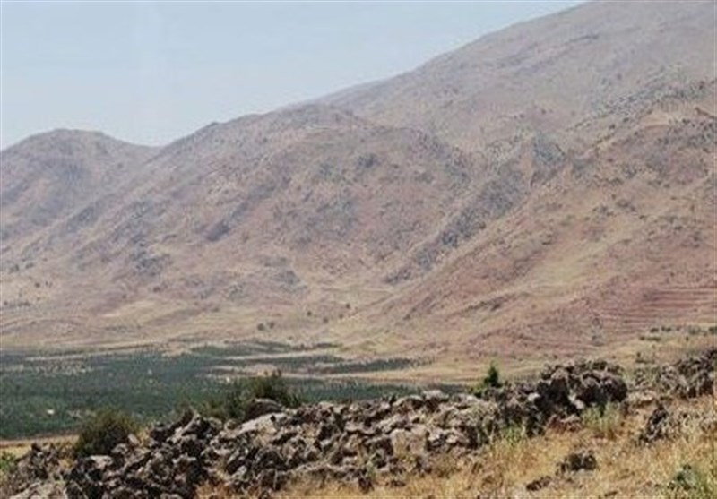 Israeli Aggression Restricted to Material Damages: Syrian Military Sources