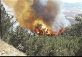 تهران| آتشسوزی در 2 هکتار از عرصههای جنگلی و مرتعی کوهسار مهار شد
