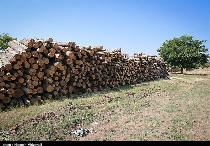 طرح جایگزینی سوخت فسیلی به جای استفاده از چوب در روستاهای اردبیل اجرا میشود