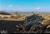لرستان|محموله قاچاق زغال در کوهدشت توقیف شد