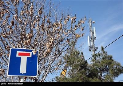 """ماجرای دکلهای مخابراتی در شیراز ادامه دارد/ رصد """"شدت امواج"""" دکلها"""