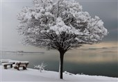 مناظر برفی در وان ترکیه + عکس