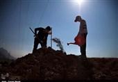 گروههای جهادی 313 نهال مثمر در مسیر کوهنوردی ارتفاعات طاقبستان کاشتند