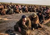 جریان صدر: داعش 50 تن طلای عراق را دزدید؛ لزوم فشار بر آمریکاییها برای استرداد آن