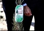 مراسم روز درختکاری در کاشان برگزار شد+تصاویر