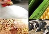 کارخانه خوراک دام عشایر استان مرکزی در ساوه افتتاح شد